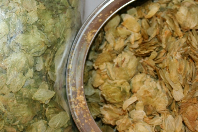 Fresh vs. Aged Hops